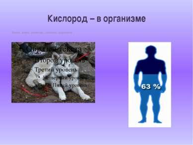 II.Кислород –простое вещество 1.Химическая формула - О2 2.Молекулярная и моля...