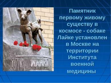 Памятник первому живому существу в космосе - собаке Лайке установлен в Москве...