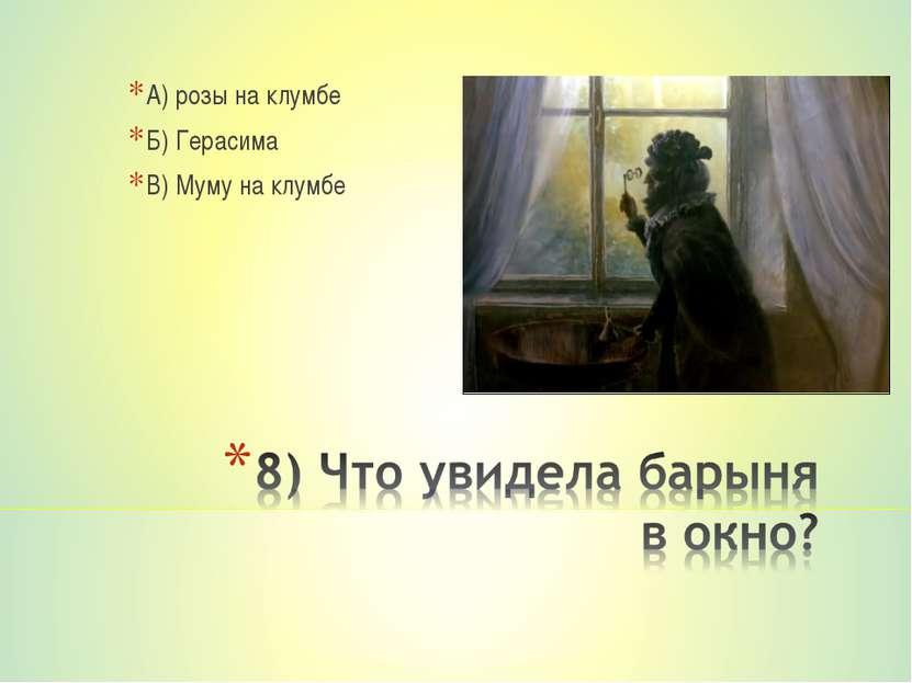 А) розы на клумбе Б) Герасима В) Муму на клумбе