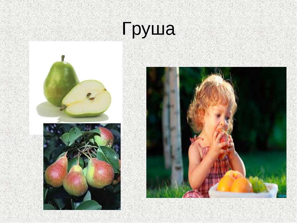 Груша