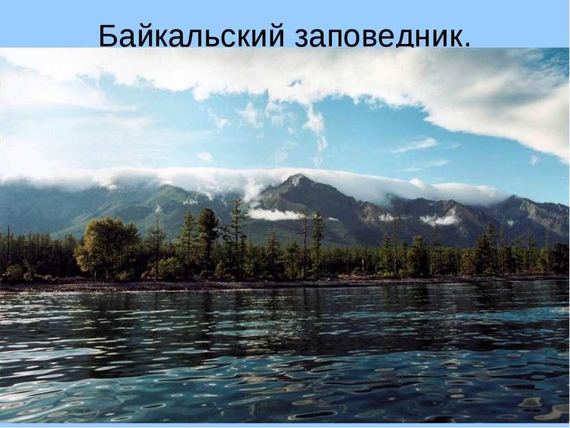 Байкальский заповедник. Вокруг самого глубокого нанашей планете озера Байкал...