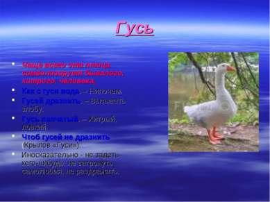 Гусь Чаще всего эта птица символизирует бывалого, хитрого, человека. Как с гу...