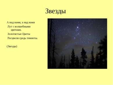 Звезды А над нами, а над нами Луг с волшебными цветами. Золотистые Цветы Расц...