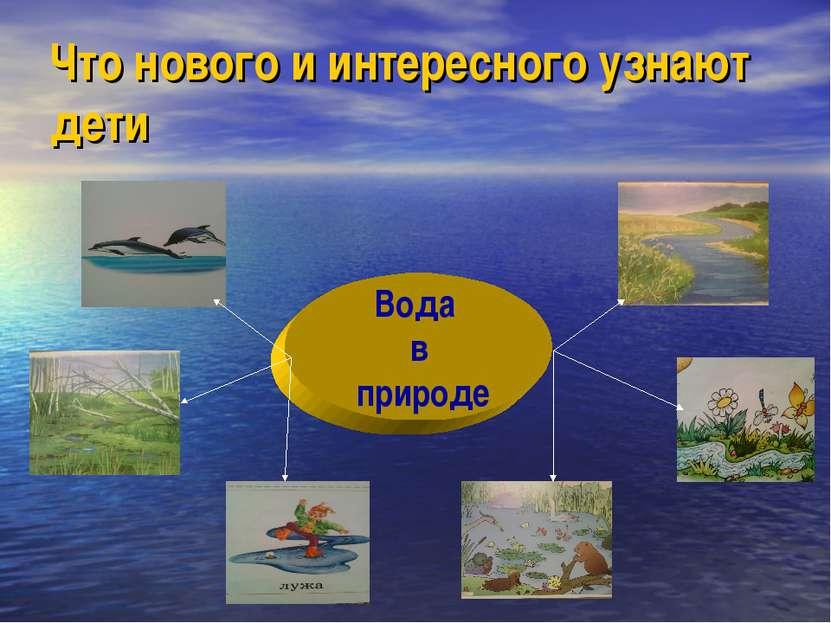 Что нового и интересного узнают дети Вода в природе