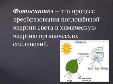 Фотосинтез– это процесс преобразования поглощённой энергии света в химическу...