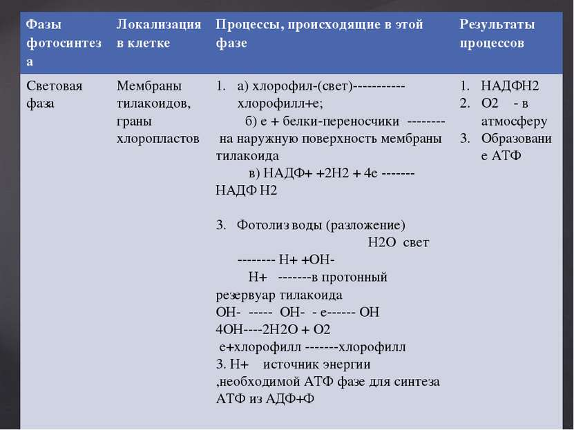 Фазы фотосинтеза Локализация в клетке Процессы,происходящие в этой фазе Резул...