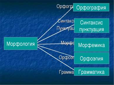 Орфография Синтаксис Пунктуация Морфология Морфемика Орфоэпия Грамматика Орфо...