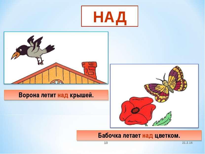 21.2.16 * НАД Ворона летит над крышей. Бабочка летает над цветком.