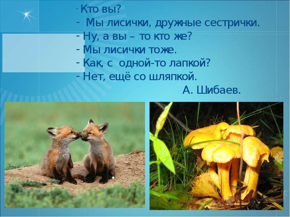 Кто вы? Мы лисички, дружные сестрички. Ну, а вы – то кто же? Мы лисички тоже....