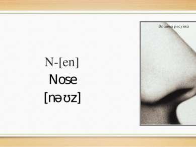 N-[en] Nose [nəʊz]