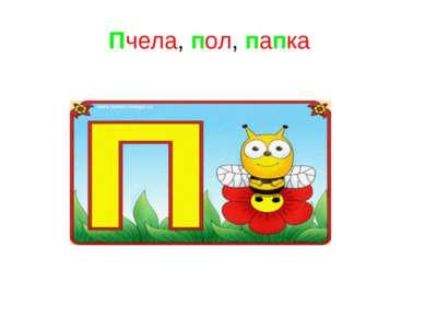 Пчела, пол, папка