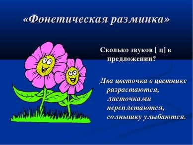 «Фонетическая разминка» Сколько звуков [ ц] в предложении? Два цветочка в цве...