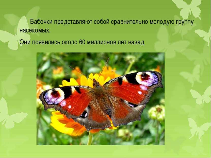 Бабочки представляют собой сравнительно молодую группу насекомых. Они появили...