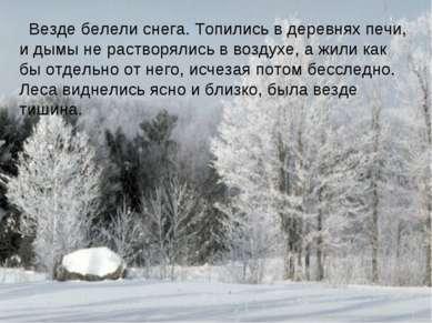 Везде белели снега. Топились в деревнях печи, и дымы не растворялись в воздух...