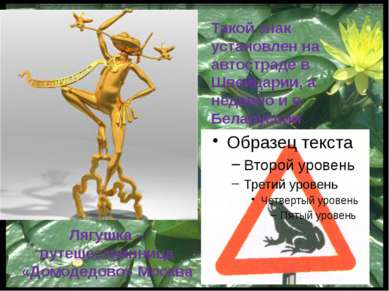 Редкие и исчезающие земноводные. Кавказская крестовка. Камышовая жаба.