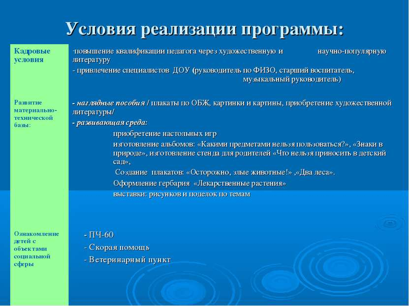 Условия реализации программы: Кадровые условия повышение квалификации педагог...