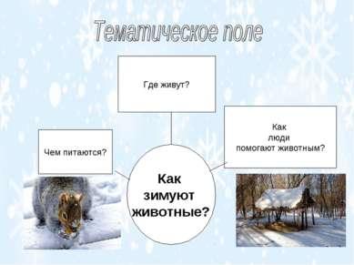 Как зимуют животные? Чем питаются? Где живут? Как люди помогают животным?