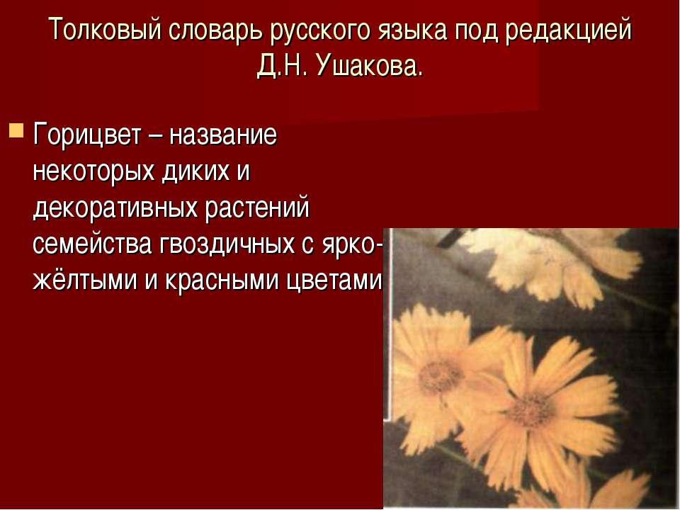 Толковый словарь русского языка под редакцией Д.Н. Ушакова. Горицвет – назван...