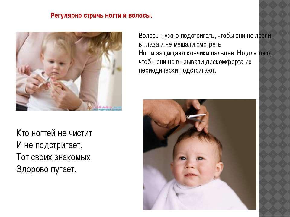 Регулярно стричь ногти и волосы. Волосы нужно подстригать, чтобы они не лезли...
