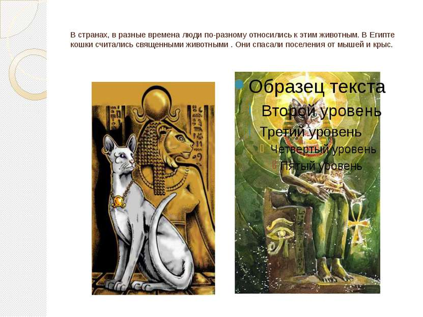 В странах, в разные времена люди по-разному относились к этим животным. В Еги...
