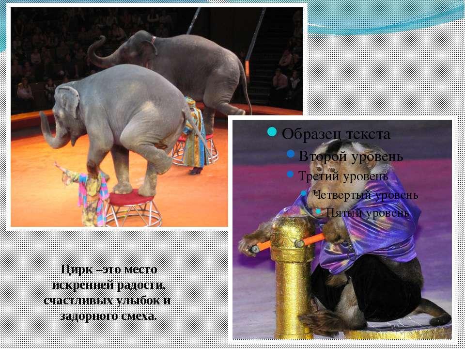 Цирк –это место искренней радости, счастливых улыбок и задорного смеха.
