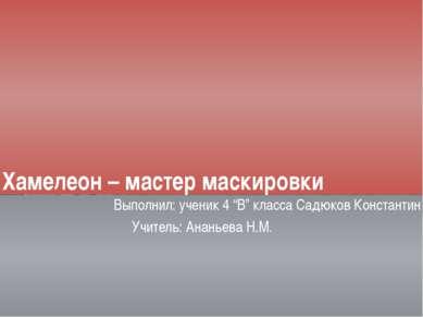 """Хамелеон – мастер маскировки Выполнил: ученик 4 """"В"""" класса Садюков Константин..."""