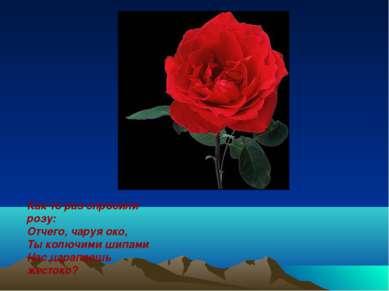 Как-то раз спросили розу: Отчего, чаруя око, Ты колючими шипами Нас царапаешь...