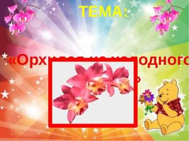 «Орхидея из холодного фарфора» ТЕМА: