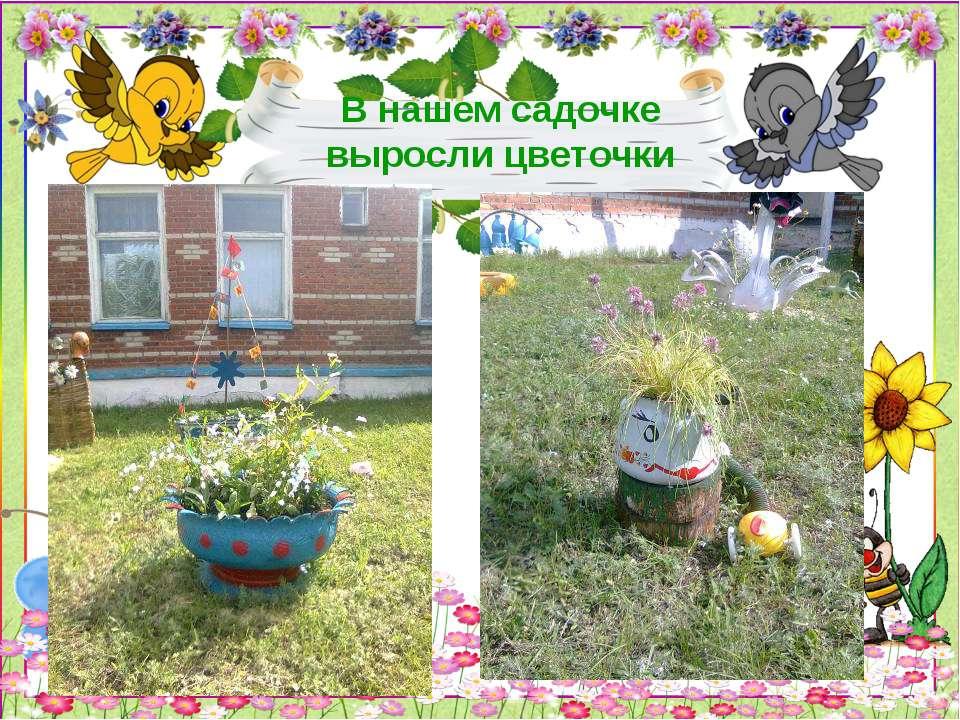 В нашем садочке выросли цветочки