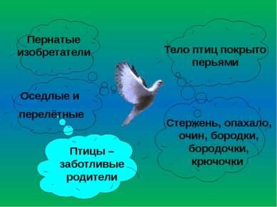 Тело птиц покрыто перьями Птицы – заботливые родители Оседлые и перелётные Пе...