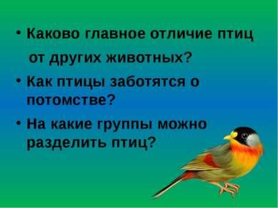 Каково главное отличие птиц от других животных? Как птицы заботятся о потомст...