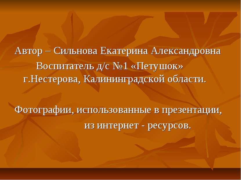 Автор – Сильнова Екатерина Александровна Воспитатель д/с №1 «Петушок» г.Несте...