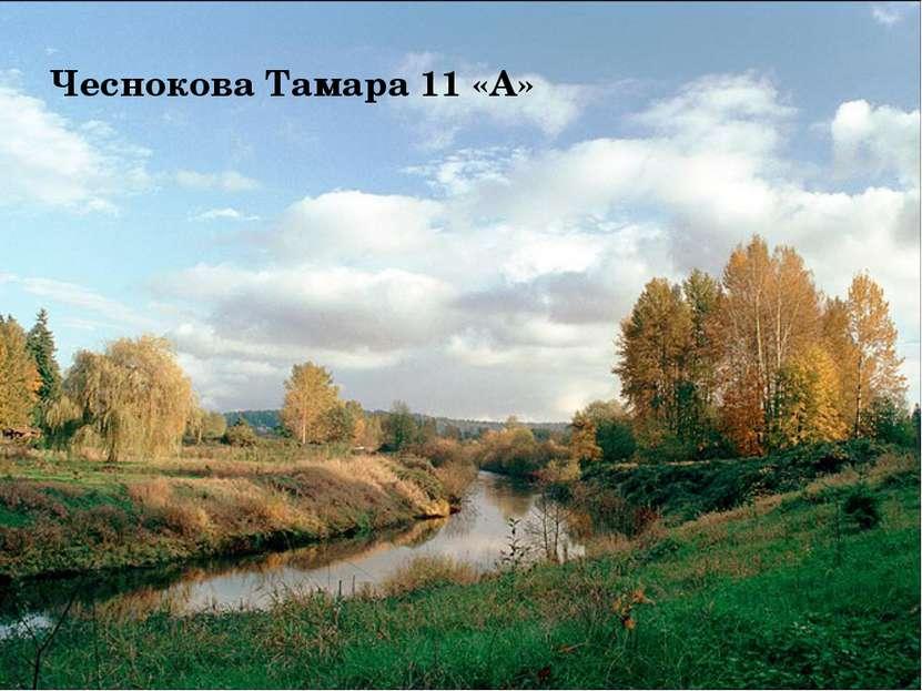 Чеснокова Тамара 11 «А»