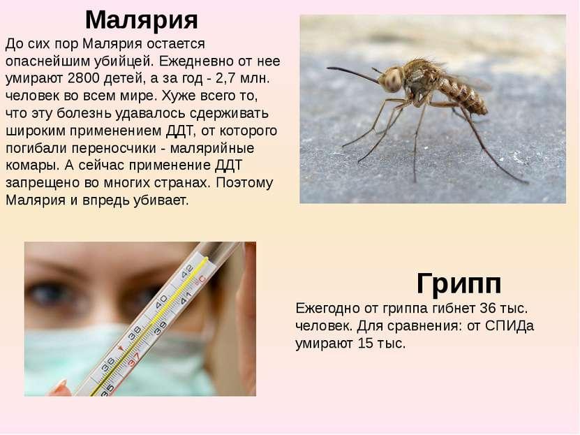 Малярия До сих пор Малярия остается опаснейшим убийцей.Ежедневно от нее уми...