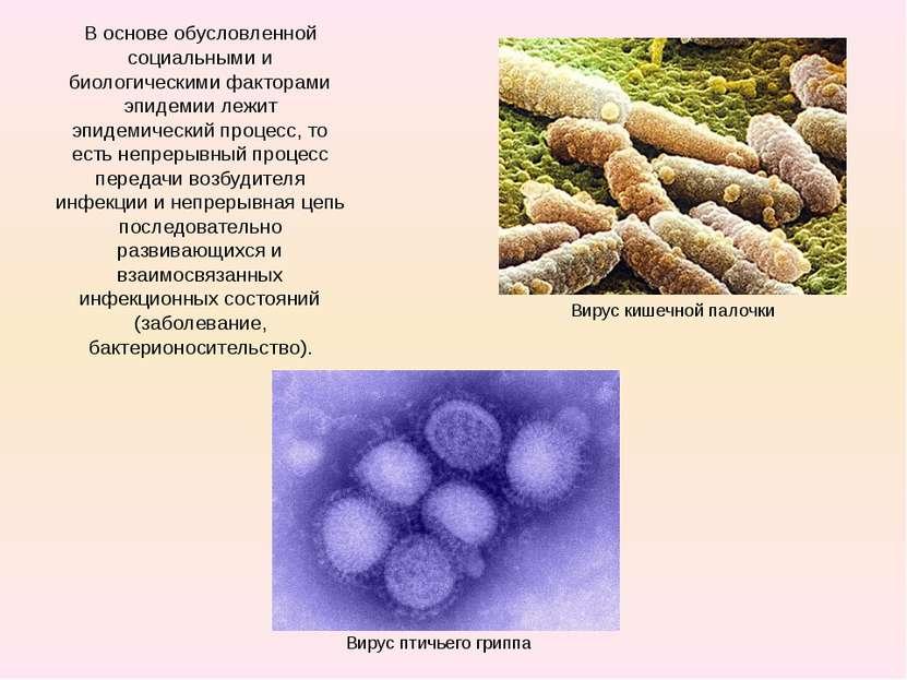 В основе обусловленной социальными и биологическими факторами эпидемии лежит ...