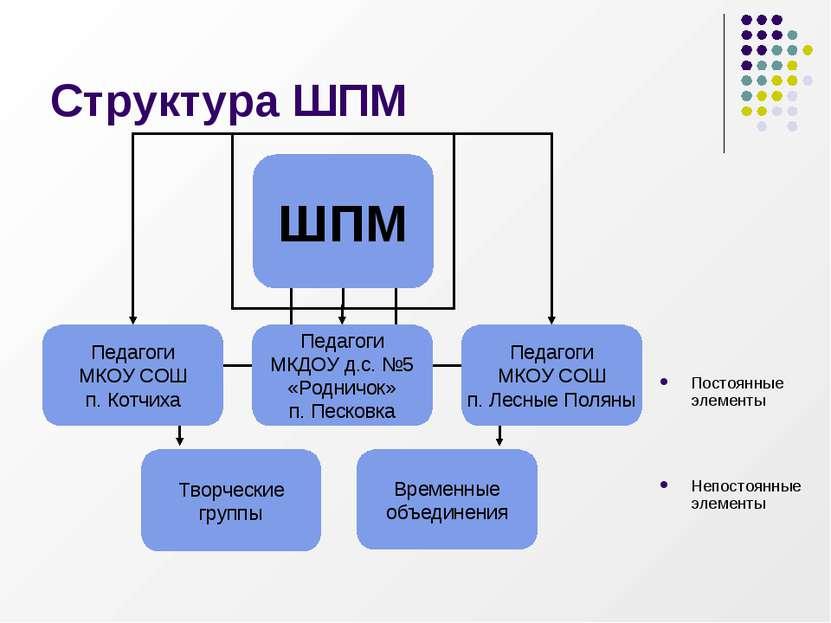 Структура ШПМ Постоянные элементы Непостоянные элементы