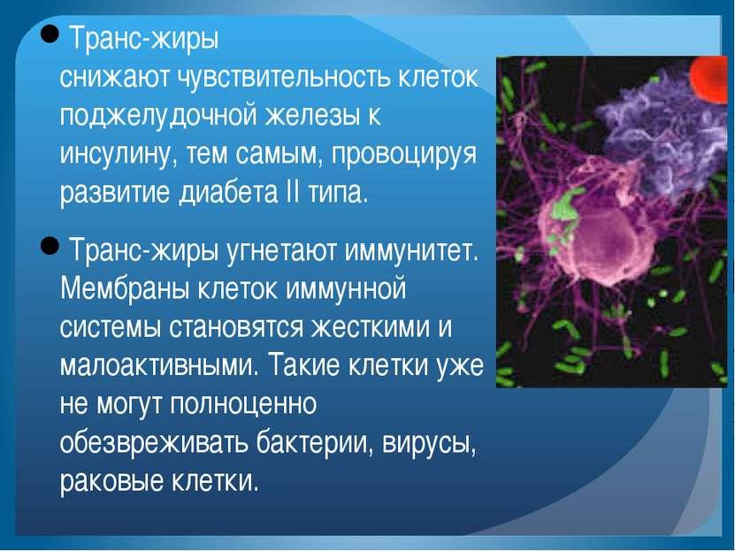 Транс-жиры снижаютчувствительность клеток поджелудочной железы к инсулину, т...