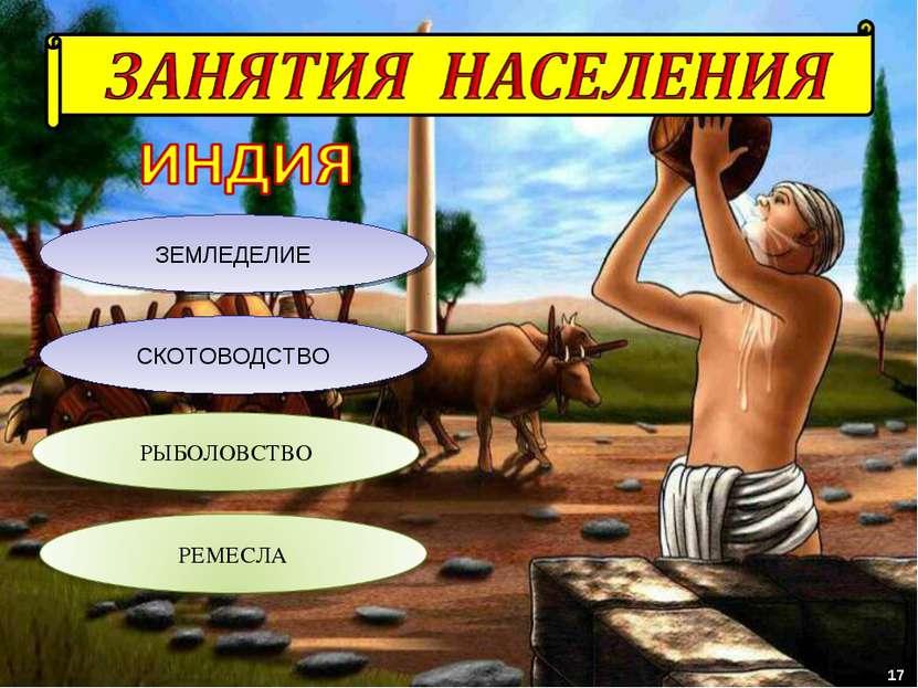 ЗЕМЛЕДЕЛИЕ СКОТОВОДСТВО 17