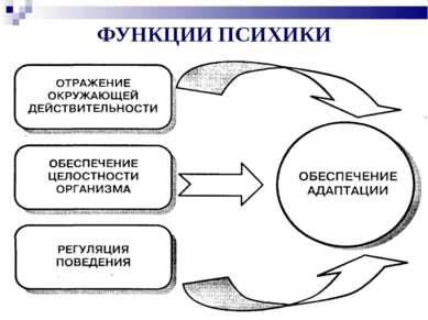 ФУНКЦИИ ПСИХИКИ