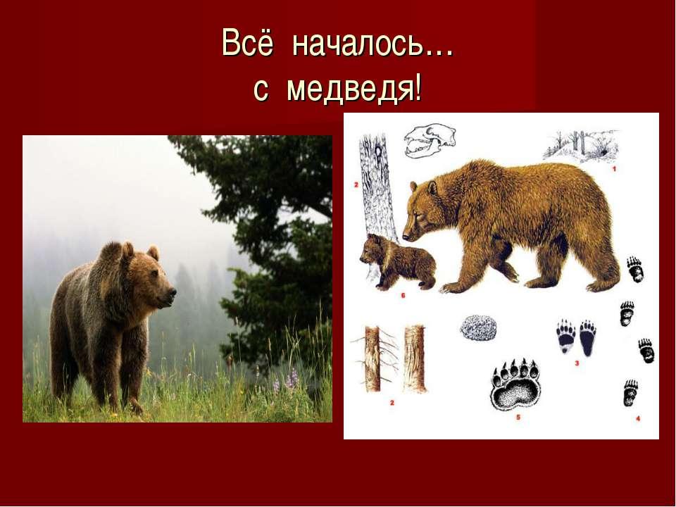Всё началось… с медведя!