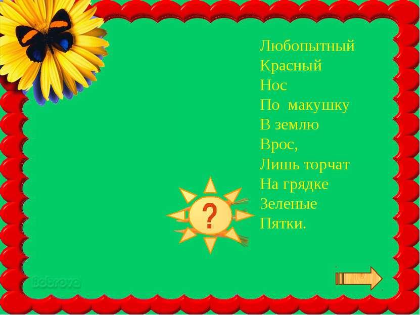 Любопытный Красный Нос По макушку В землю Врос, Лишь торчат На грядке Зеленые...