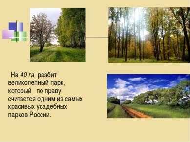 На 40 га разбит великолепный парк, который по праву считается одним из самых ...