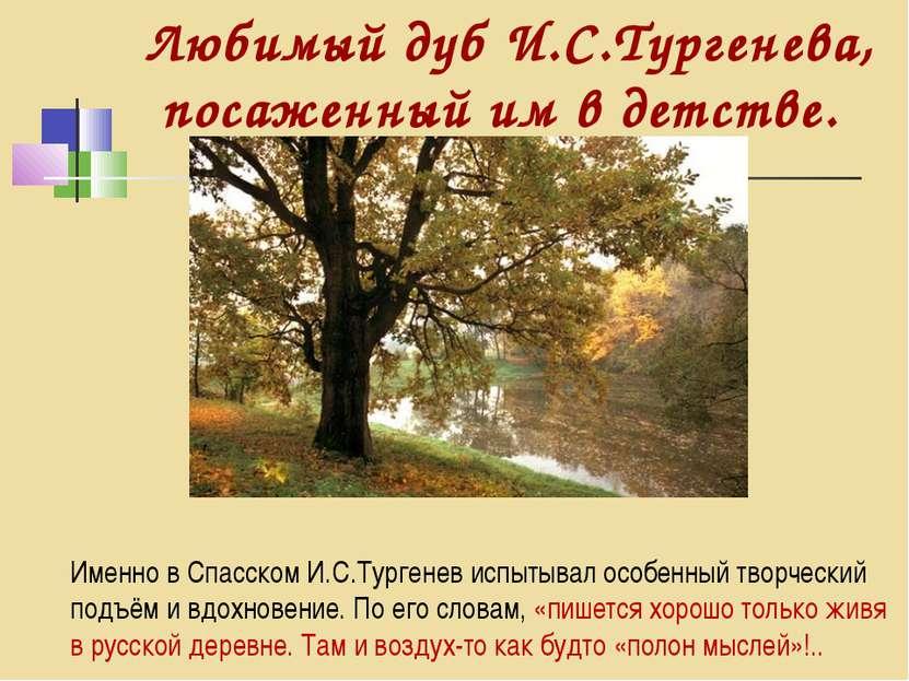 Именно в Спасском И.С.Тургенев испытывал особенный творческий подъём и вдохно...
