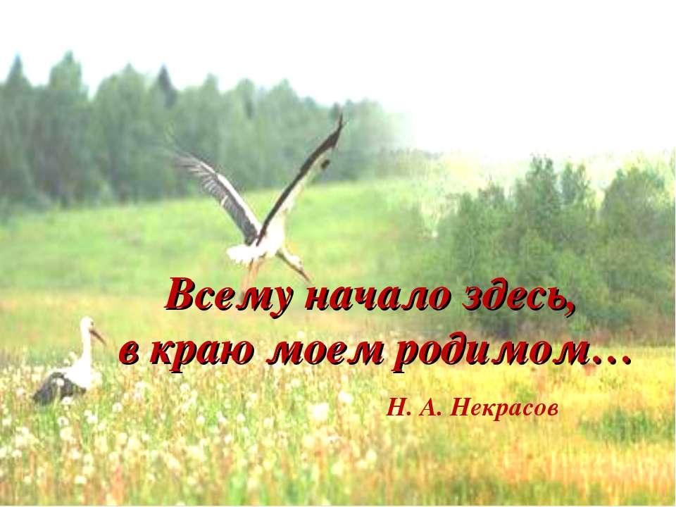 Всему начало здесь, в краю моем родимом… Н. А. Некрасов