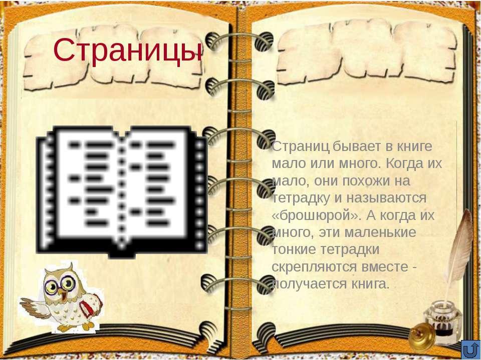 Корешок Корешок – дедушка страничек. Он всегда на виду. Если книга стоит на п...