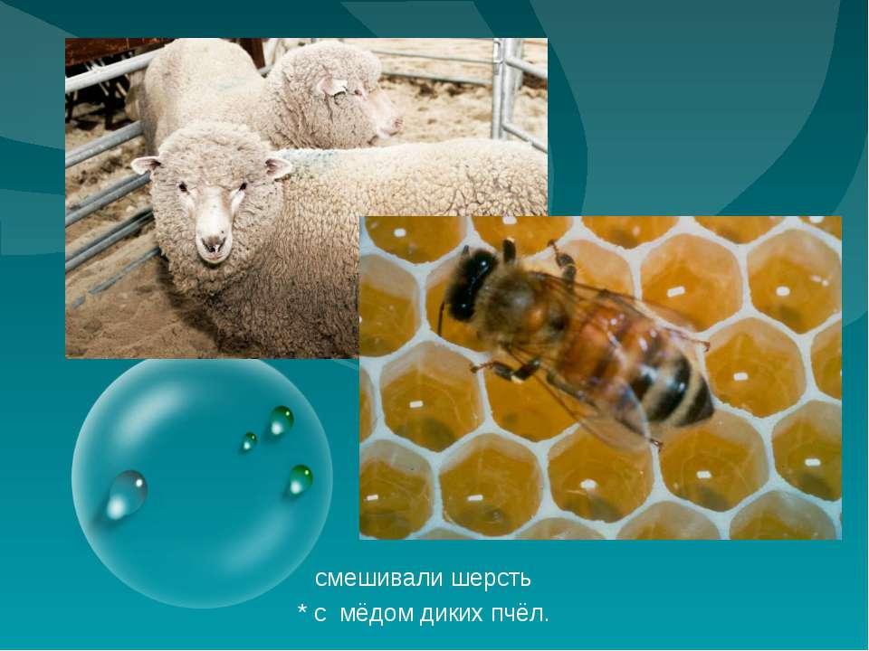 смешивали шерсть * с мёдом диких пчёл.