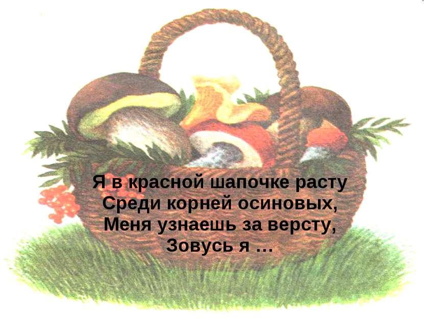 Я в красной шапочке расту Среди корней осиновых, Меня узнаешь за версту, Зову...