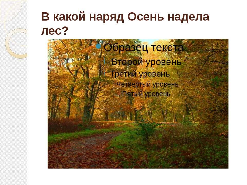 В какой наряд Осень надела лес?