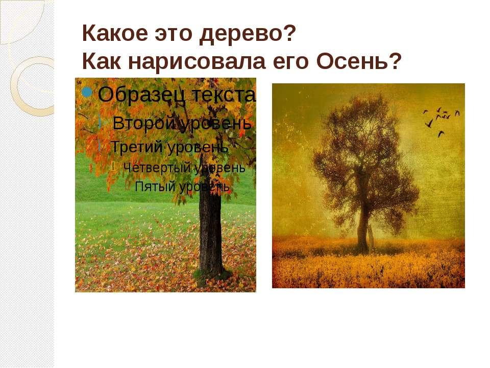 Какое это дерево? Как нарисовала его Осень?