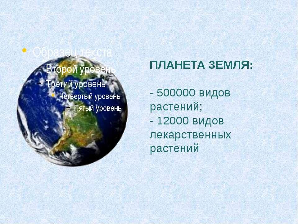 ПЛАНЕТА ЗЕМЛЯ: - 500000 видов растений; - 12000 видов лекарственных растений